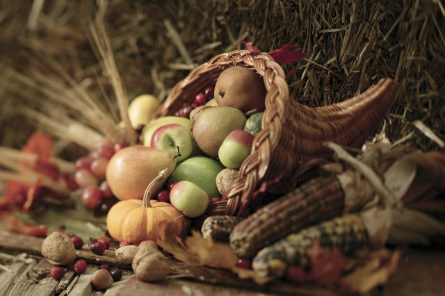 Fall Harvest  A Creamy Blend Of Mother Nature's Finest Autumn Yield.